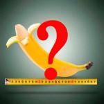 Disfunção Erétil – O que é?