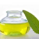 Tratamentos naturais para a disfunção eréctil